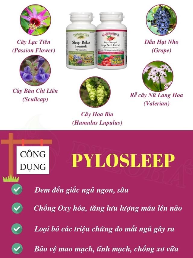 Công dụng tuyệt vời của bộ đôi Dược thảo PyLoSleep